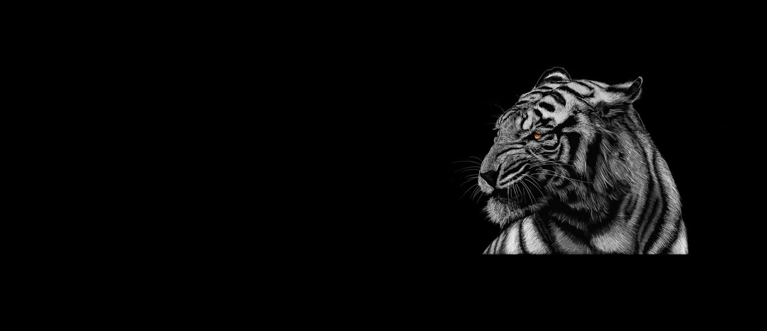 tiger-background9
